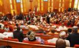 Tempers rise in Senate over military's involvement in polls