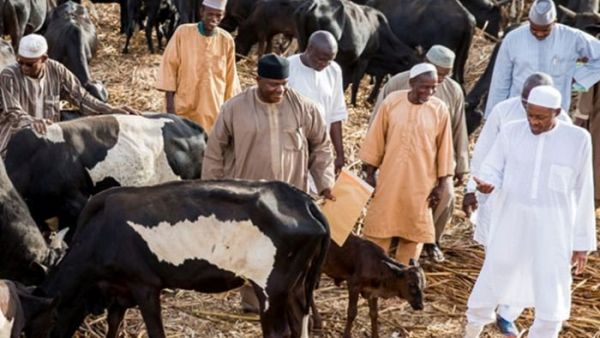 Nigerians mock Buhari as president visits cattle ranch rather than school where abduction happened