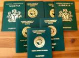 FG gives conditions for obtaining new International Passport