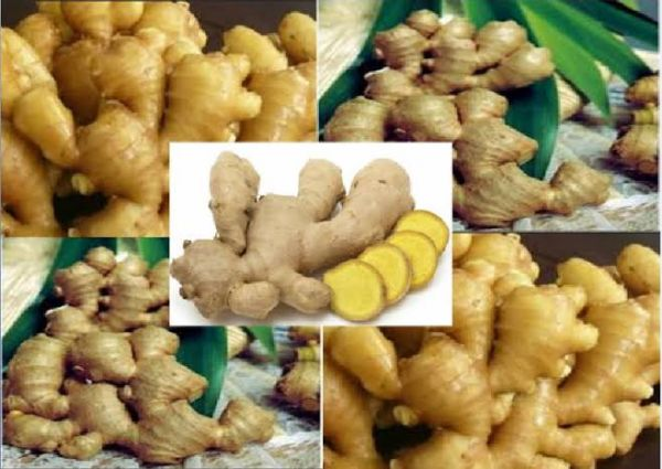 Nigeria earned $10.4m from ginger export in 2019